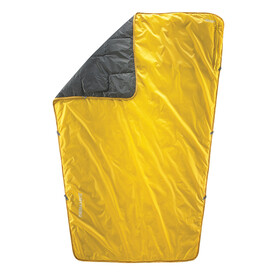 Therm-a-Rest Proton yellow/grey